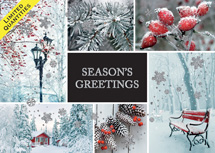 Winter Charm Holiday Cards